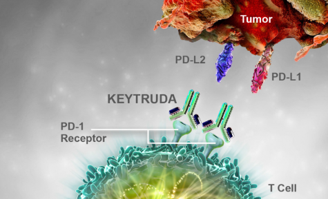 A Breakthrough Cancer Drug: Pembrolizumab